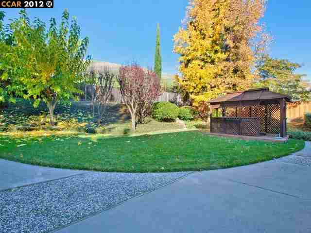 Additional photo for property listing at 486 BOLERO Drive  Danville, California 94526 United States