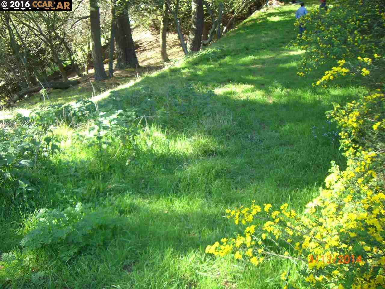 Additional photo for property listing at 6060 GRIZZLY PEAK BLVD  Oakland, Kalifornien 94611 Vereinigte Staaten