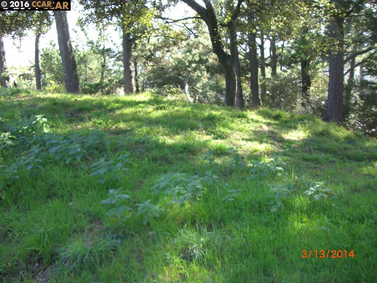 Additional photo for property listing at 6060 GRIZZLY PEAK BLVD 6060 GRIZZLY PEAK BLVD Oakland, 加利福尼亞州 94611 美國