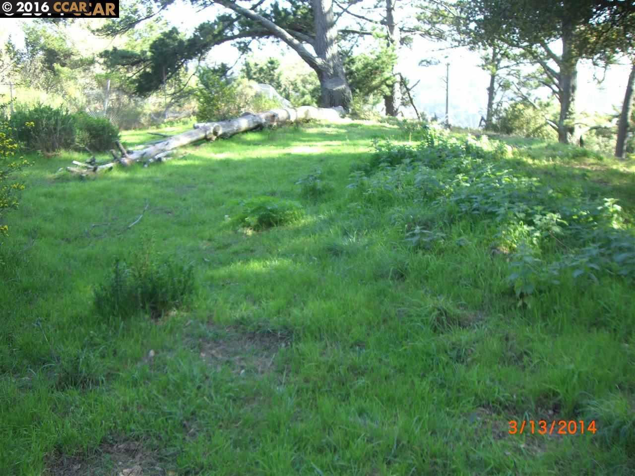 Additional photo for property listing at 6060 GRIZZLY PEAK BLVD 6060 GRIZZLY PEAK BLVD Oakland, Калифорния 94611 Соединенные Штаты