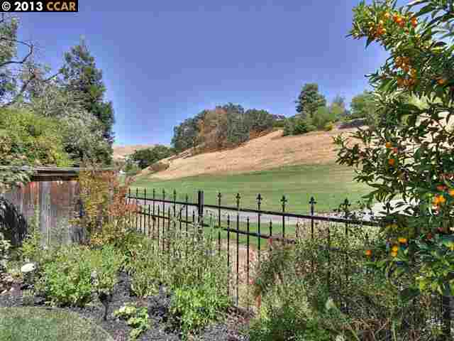 Additional photo for property listing at 206 CONDOR WAY  Clayton, Californie 94517 États-Unis