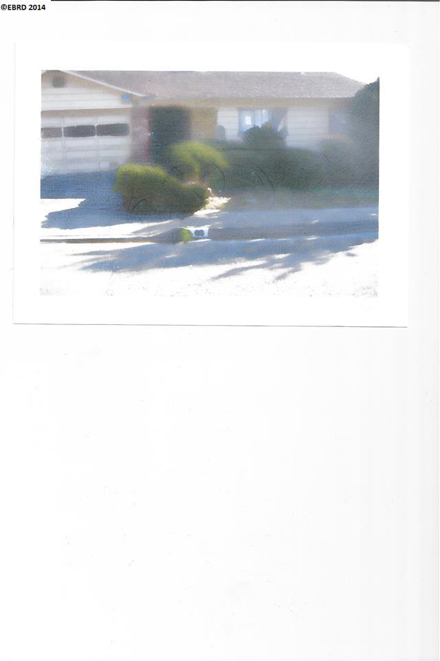 Maison unifamiliale pour l Vente à 66 EDGEMONT WAY Oakland, Californie 94605 États-Unis