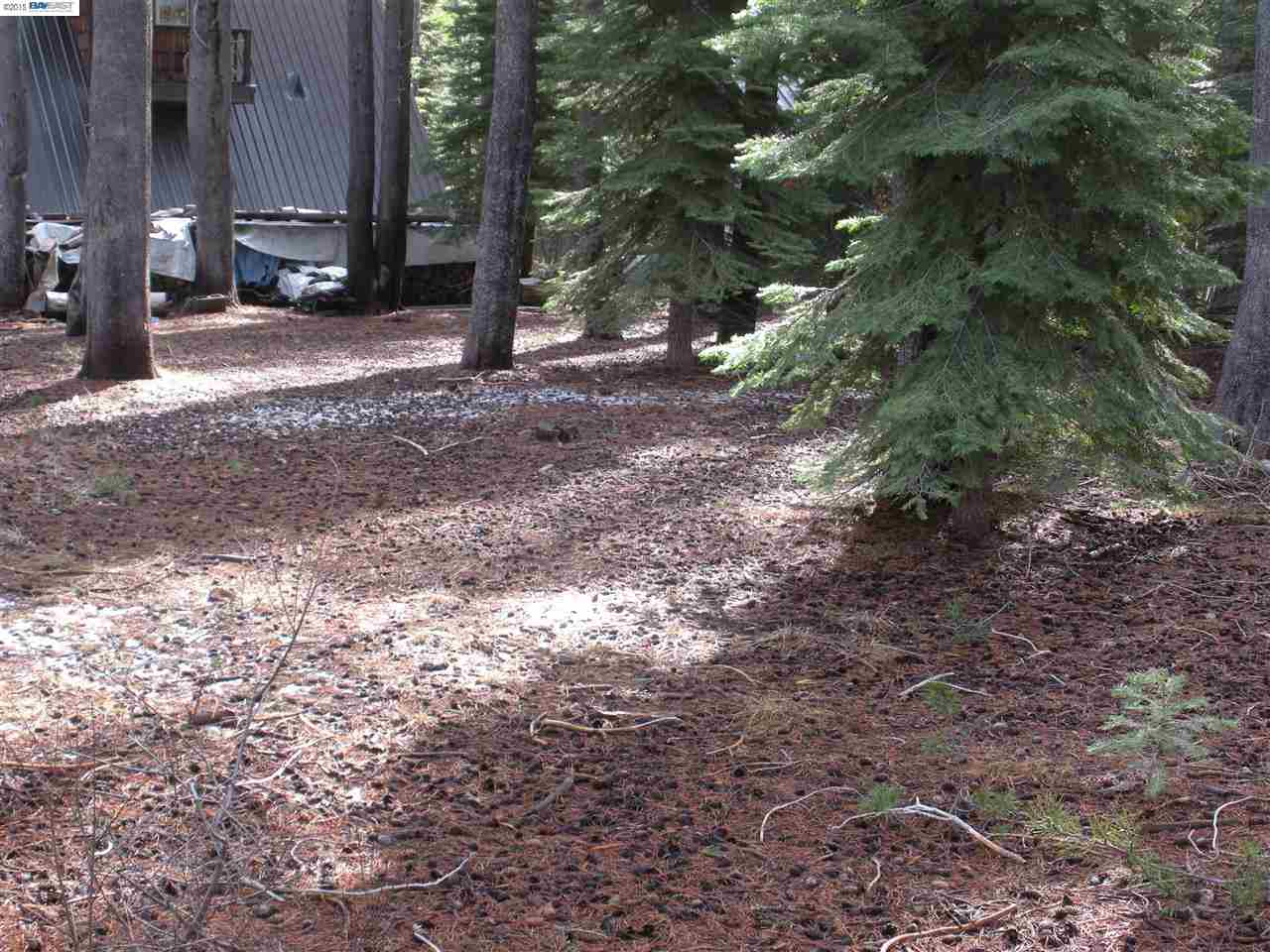 Additional photo for property listing at 50741 Conifer  Soda Springs, Калифорния 96161 Соединенные Штаты