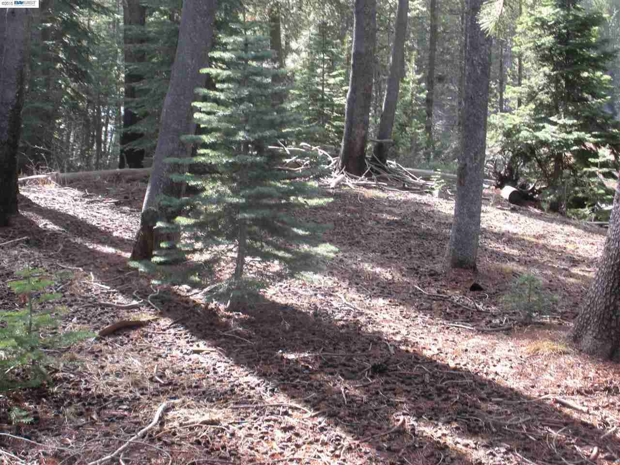 Additional photo for property listing at 50741 Conifer 50741 Conifer Soda Springs, California 96161 Estados Unidos