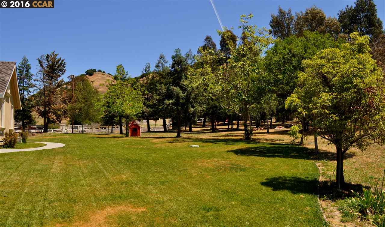 Additional photo for property listing at 7100 CROW CANYON Road  Castro Valley, California 94552 United States
