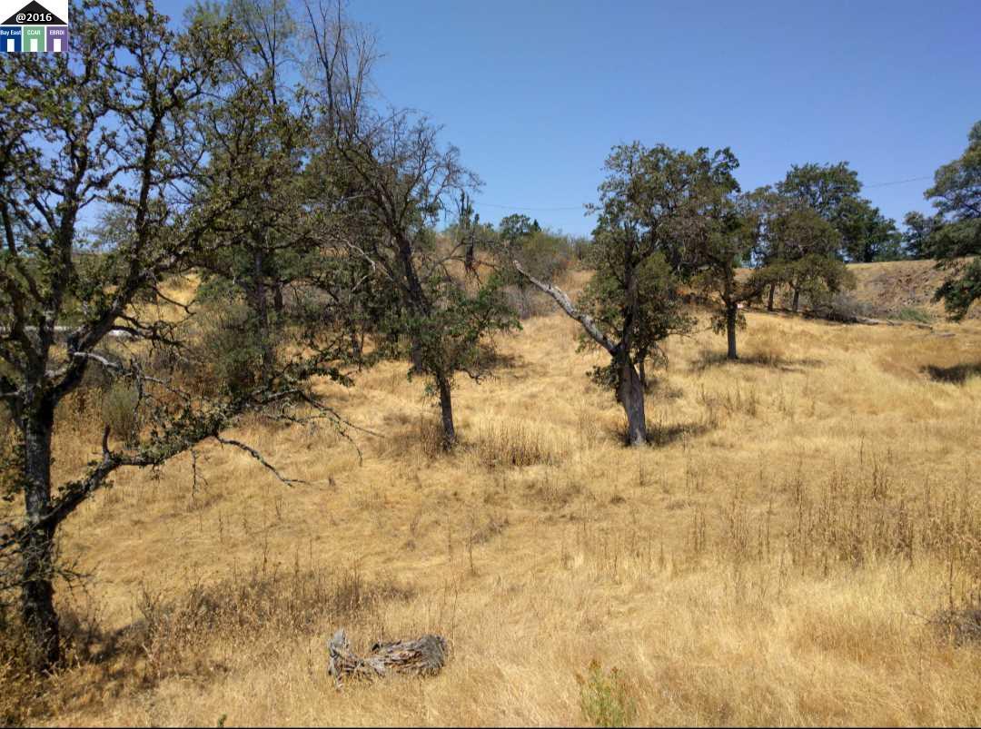 土地 為 出售 在 3L1003 Salinas Street La Grange, 加利福尼亞州 95329 美國