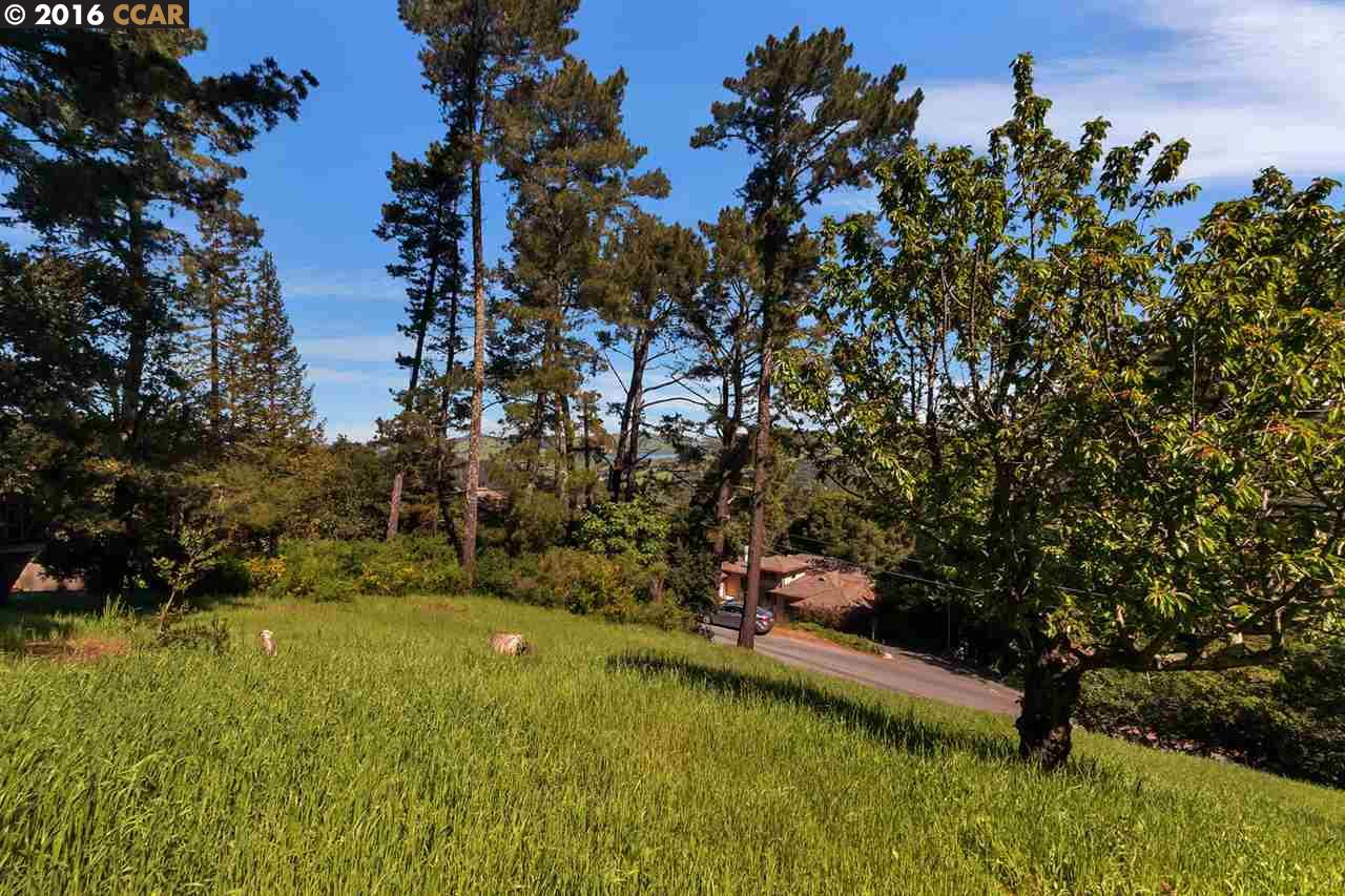 Additional photo for property listing at El Toyonal  Orinda, California 94563 United States