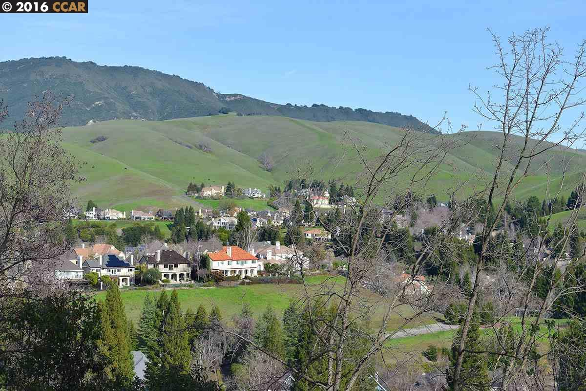 Additional photo for property listing at 201 S Ridge Court  Danville, Californie 94506 États-Unis