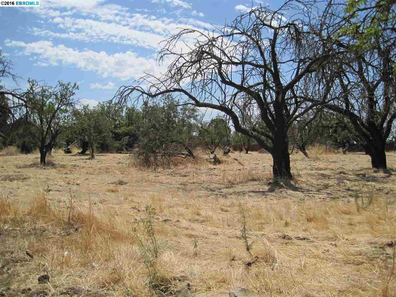 土地 為 出售 在 2211 Empire 2211 Empire Brentwood, 加利福尼亞州 94513 美國