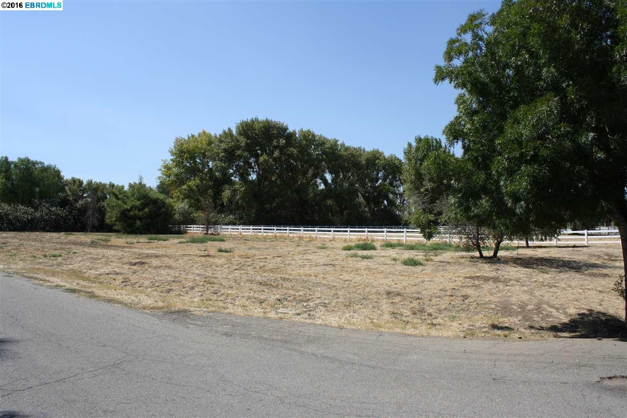 Additional photo for property listing at 3701 VALLEY OAK Drive  Brentwood, California 94513 Estados Unidos
