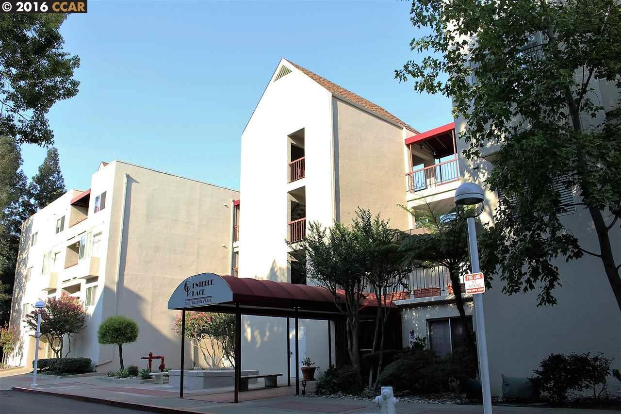 3173 Wayside Plaza, WALNUT CREEK, 94597, CA