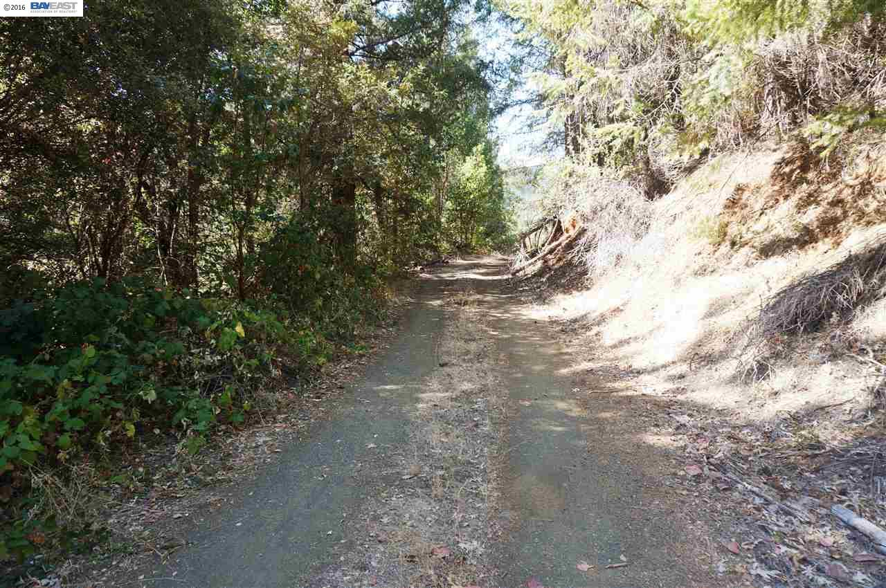 Land for Sale at 1761 Sky Ranch Road Junction City, California 96048 United States