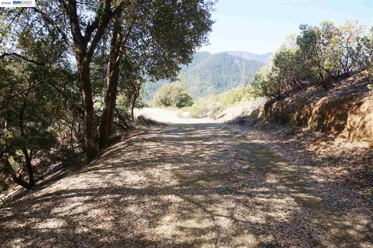 Additional photo for property listing at 1761 Sky Ranch Road  Junction City, カリフォルニア 96048 アメリカ合衆国