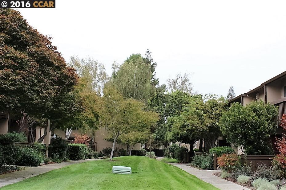 Buying or Selling WALNUT CREEK Real Estate, MLS:40762378, Call The Gregori Group 800-981-3134