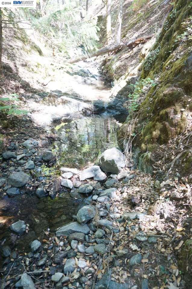Additional photo for property listing at 321 Black Bear Road 321 Black Bear Road Weaverville, California 96093 United States