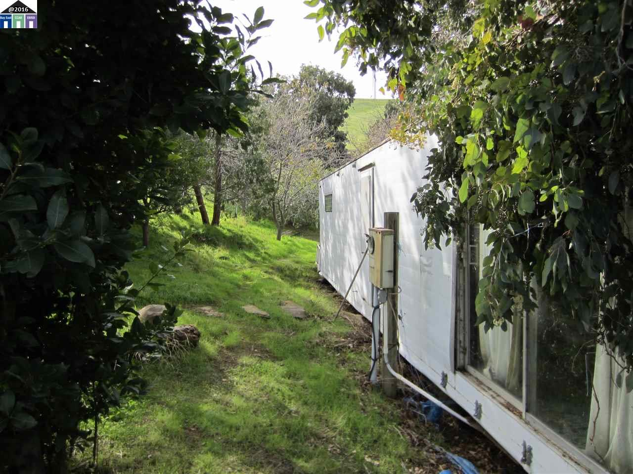 Additional photo for property listing at ARMSTRONG Road ARMSTRONG Road Byron, カリフォルニア 94514 アメリカ合衆国