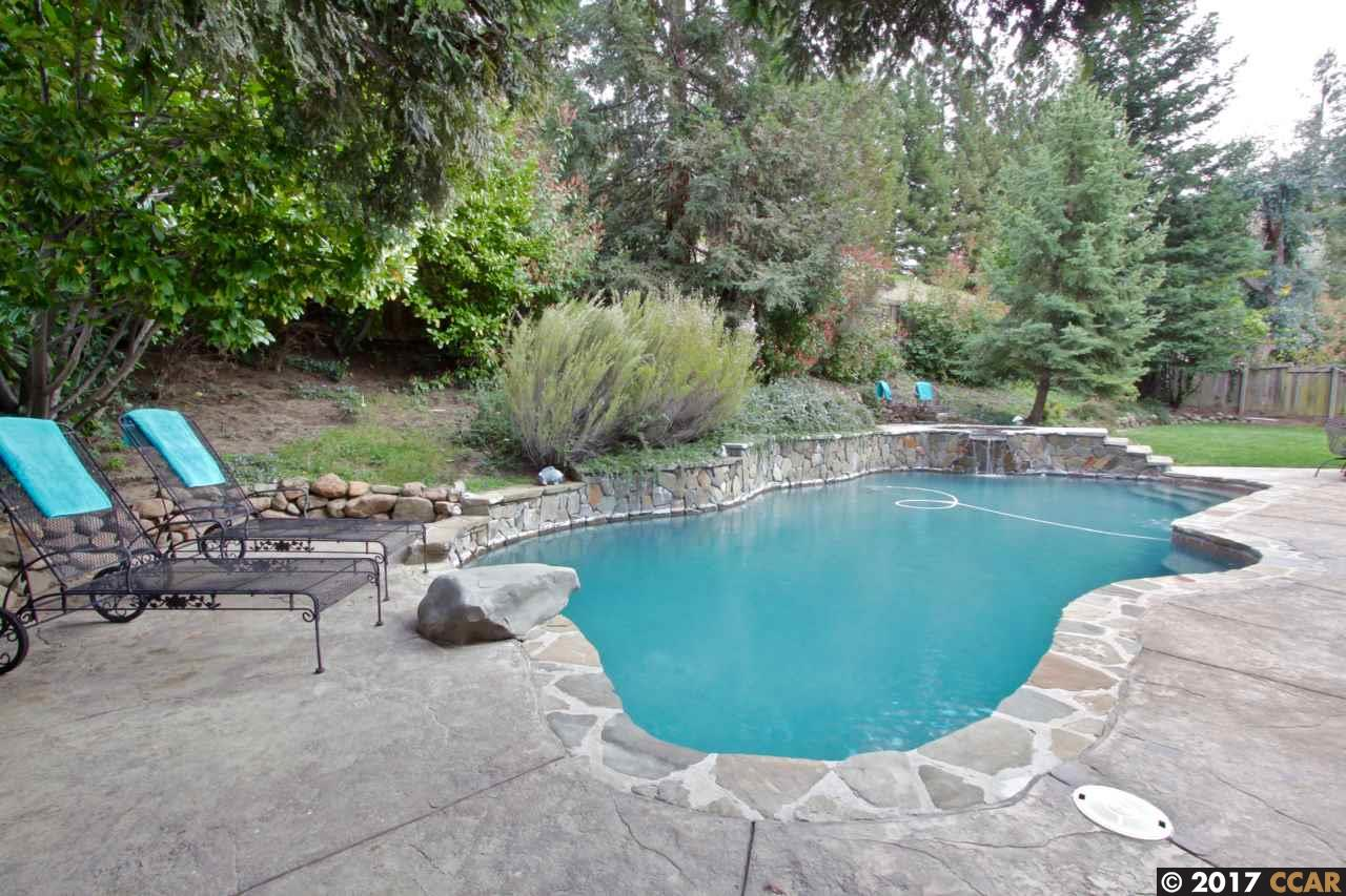 Additional photo for property listing at 127 Gatetree Court  Danville, California 94526 United States