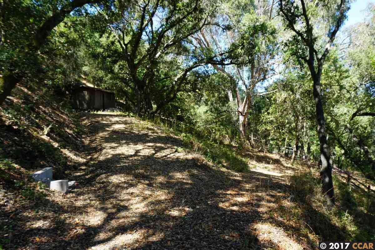 Additional photo for property listing at 42A Crestview Drive 42A Crestview Drive Orinda, California 94563 United States
