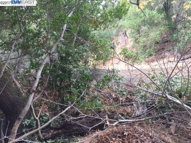 Additional photo for property listing at Palomares Road  Castro Valley, California 94552 Estados Unidos