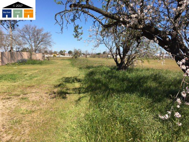 Additional photo for property listing at 8400 lone tree way 8400 lone tree way Brentwood, Kalifornien 94513 Vereinigte Staaten
