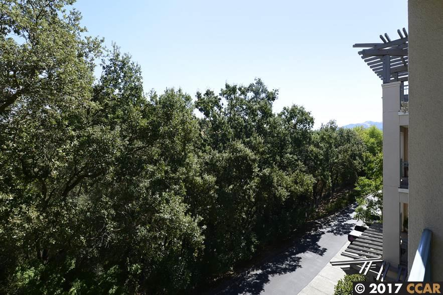 Additional photo for property listing at 1840 Tice Creek Drive  Walnut Creek, California 94595 United States