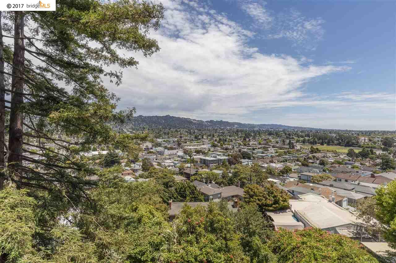 Additional photo for property listing at 864 Hillside Avenue  Albany, California 94706 United States