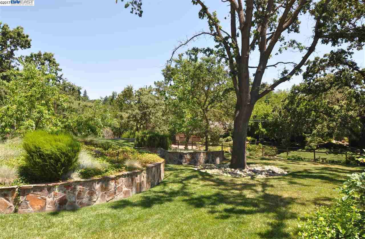 Additional photo for property listing at 541 El Pintado Road  Danville, California 94526 United States