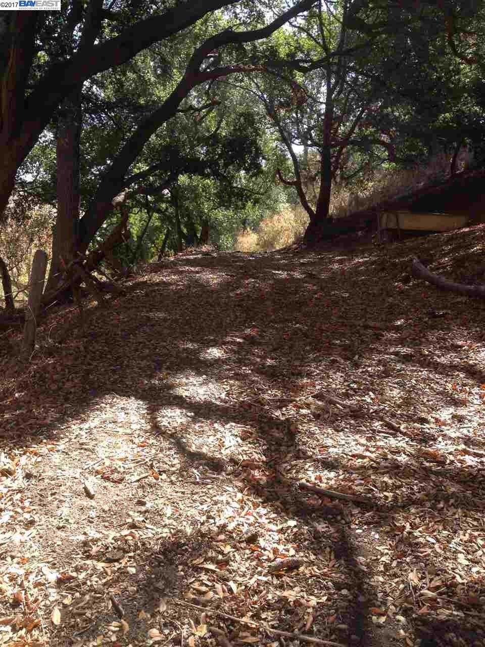 土地 のために 売買 アット Mill Creek Road Fremont, カリフォルニア 94539 アメリカ合衆国