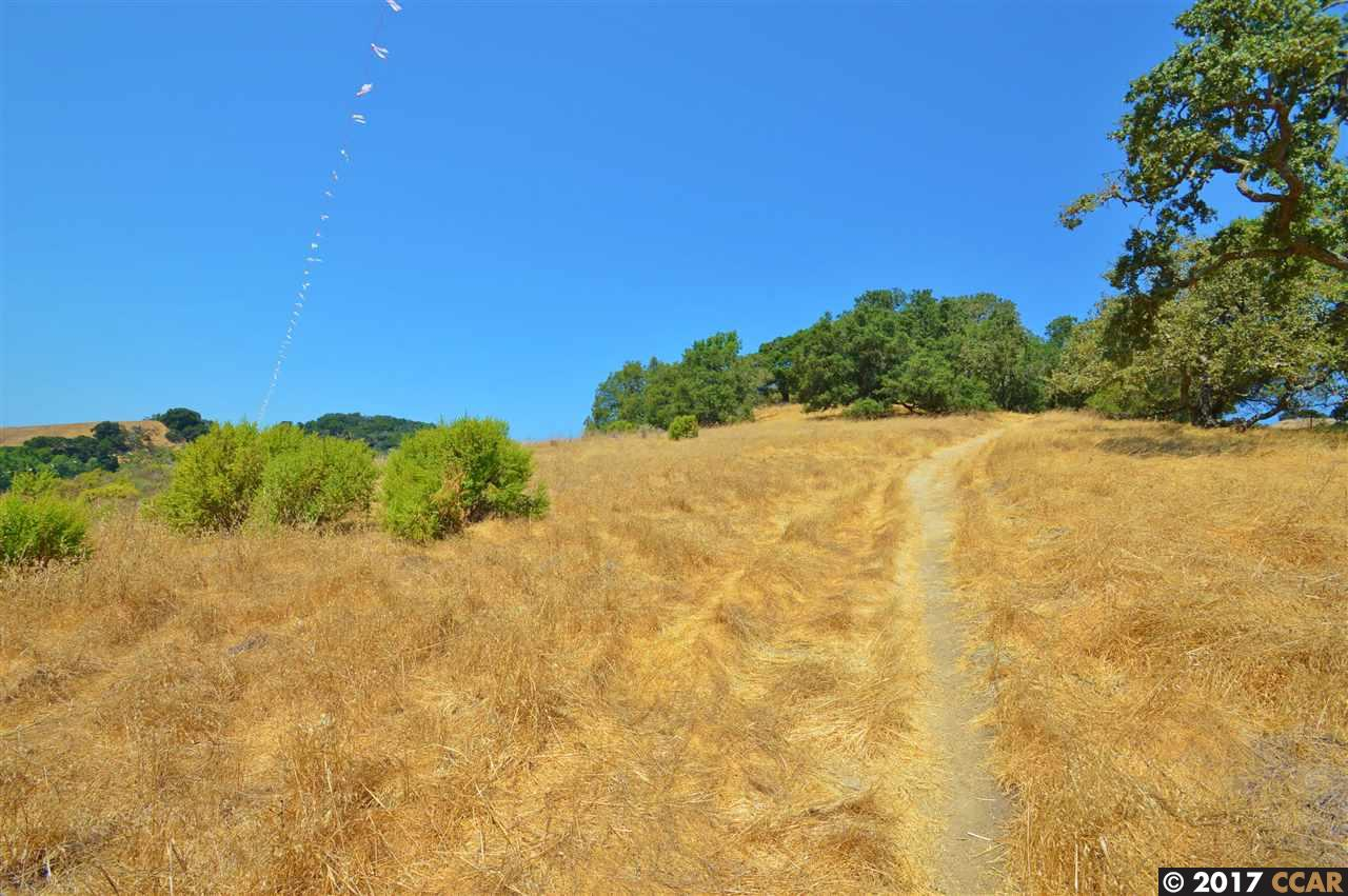Additional photo for property listing at Monticello Road Monticello Road Lafayette, カリフォルニア 94549 アメリカ合衆国
