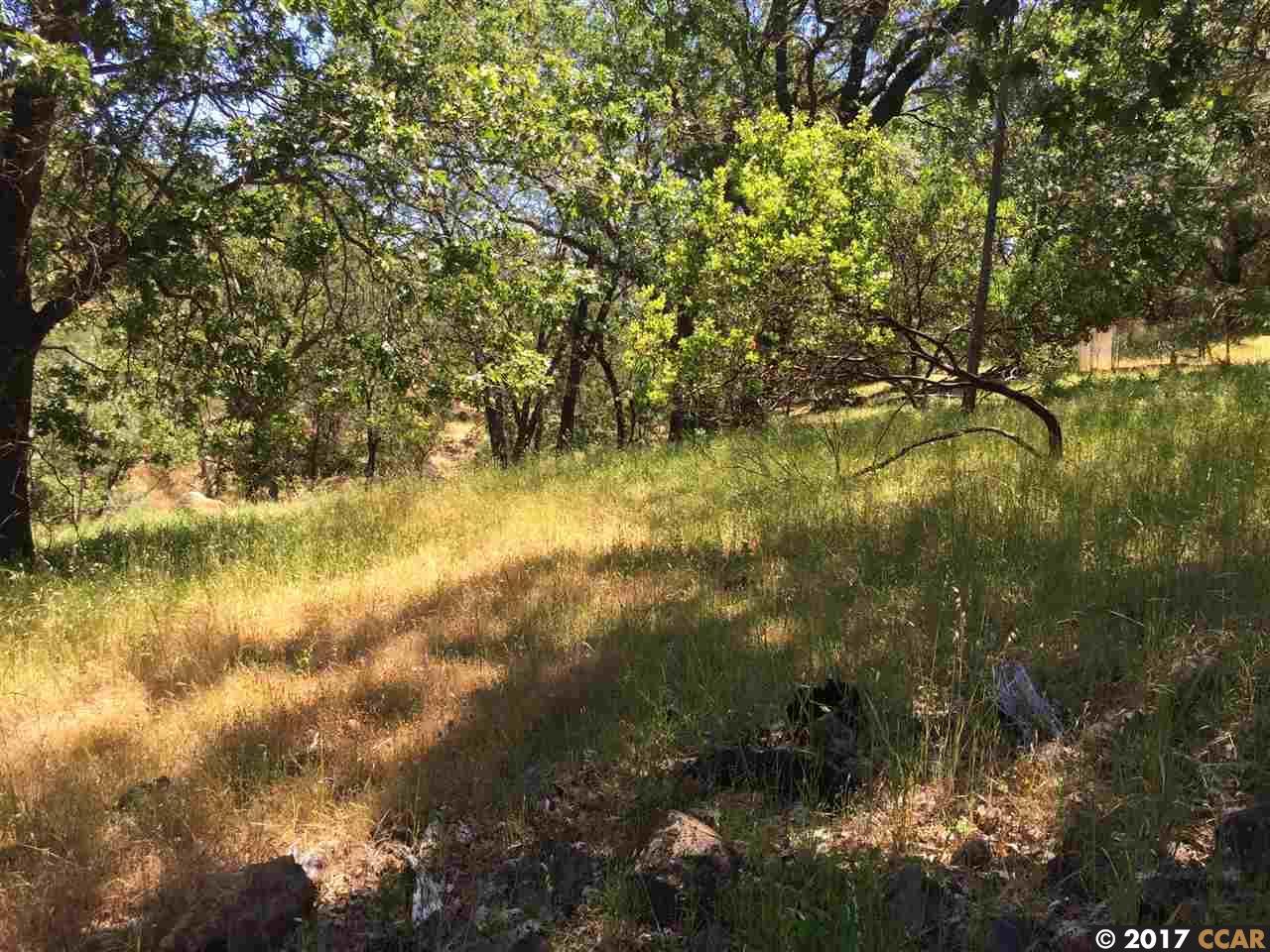 土地 のために 売買 アット 17727 Deer Hill Road Clearlake, カリフォルニア 94567 アメリカ合衆国