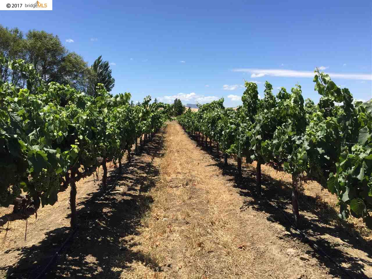 Land for Sale at BRUNS Road BRUNS Road Byron, California 94514 United States