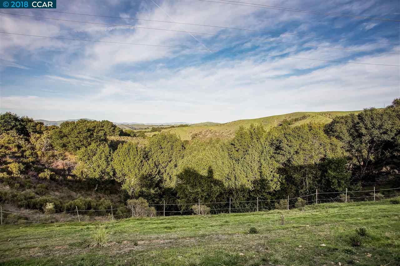 Additional photo for property listing at 268 Driveummond Drive 268 Driveummond Drive Hayward, Kalifornien 94542 Vereinigte Staaten