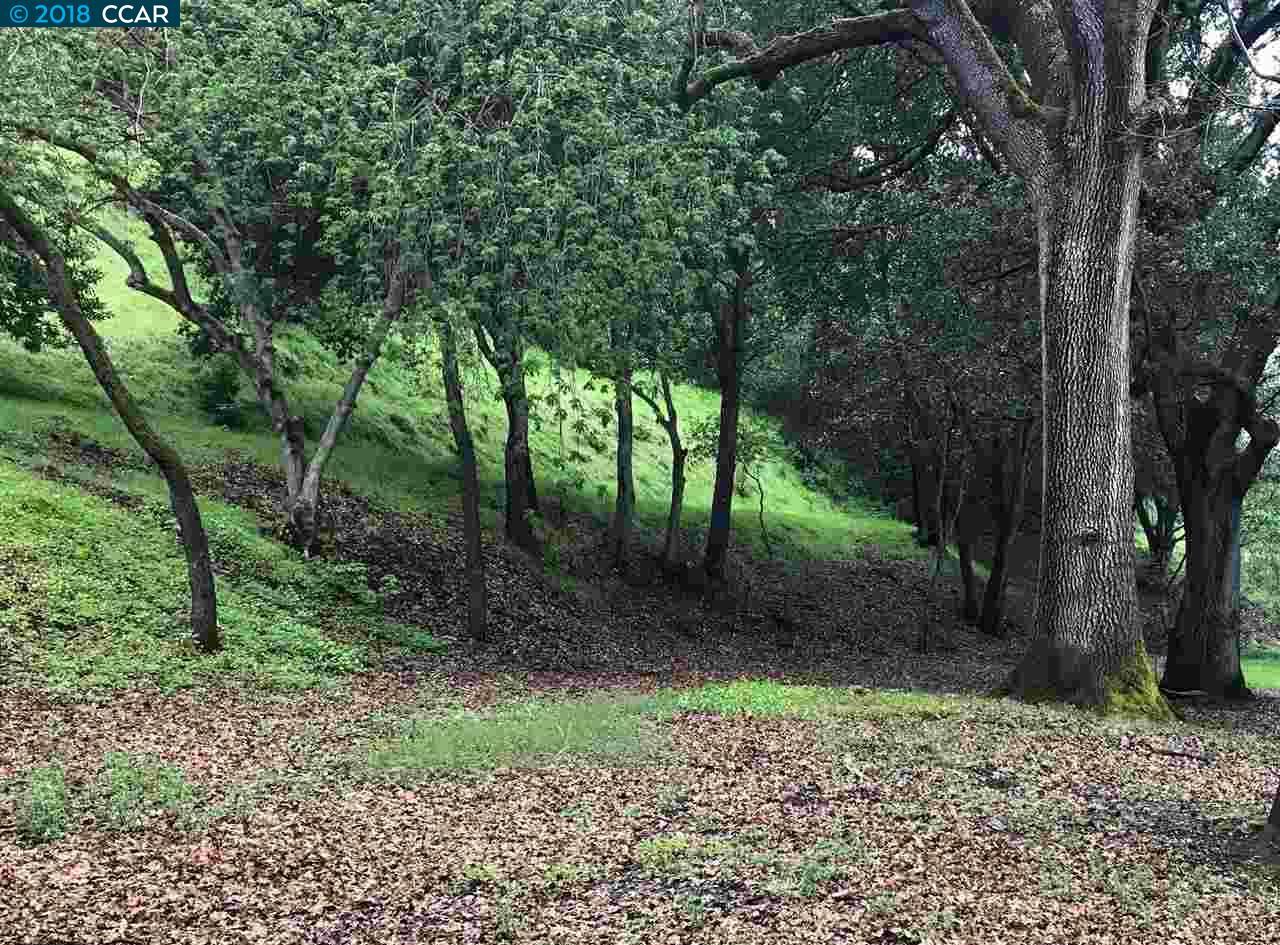 Land for Sale at W Newell Avenue W Newell Avenue Walnut Creek, California 94596 United States