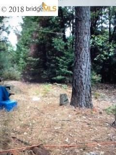 Terrain pour l Vente à 18280 Setto Way 18280 Setto Way Oroville, Californie 95966 États-Unis
