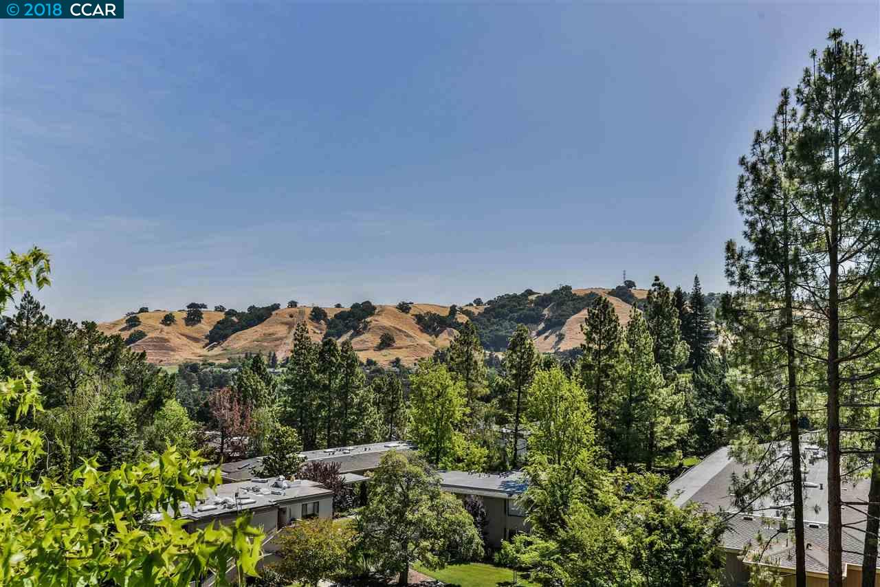 2520 Ptarmigan Dr. WALNUT CREEK CA 94595-9999, Image  11