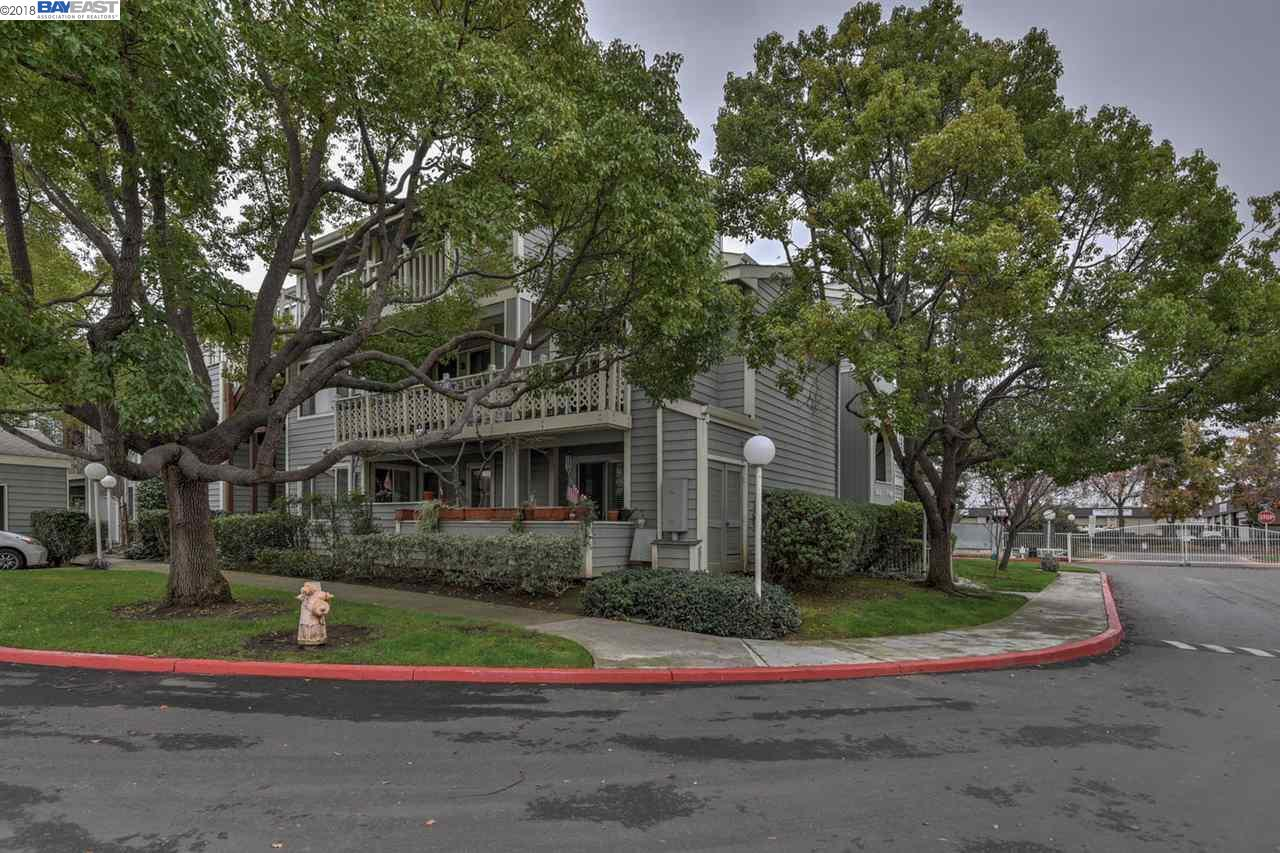 Search results for 3517 birchwood terrace fremont ca