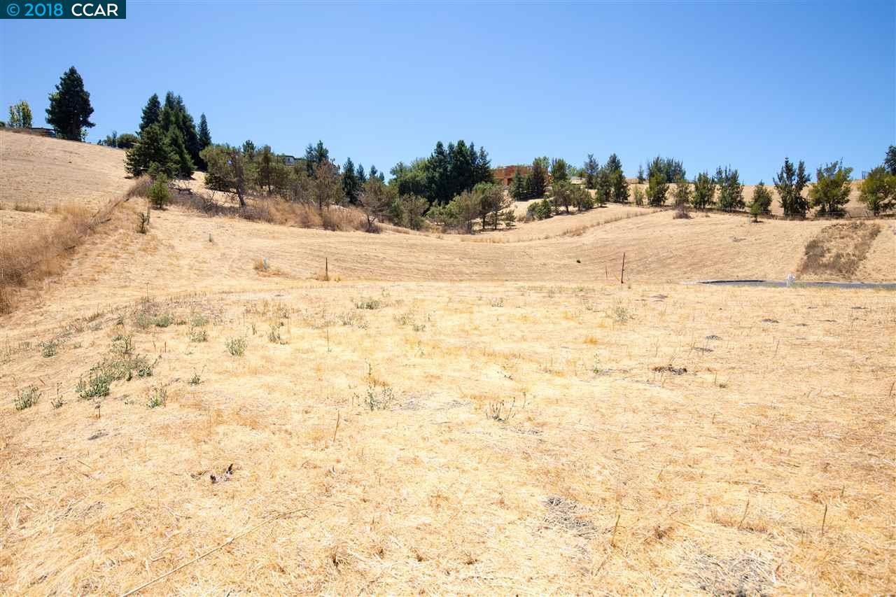 1240 CULET RANCH RD, DANVILLE, CA 94506  Photo