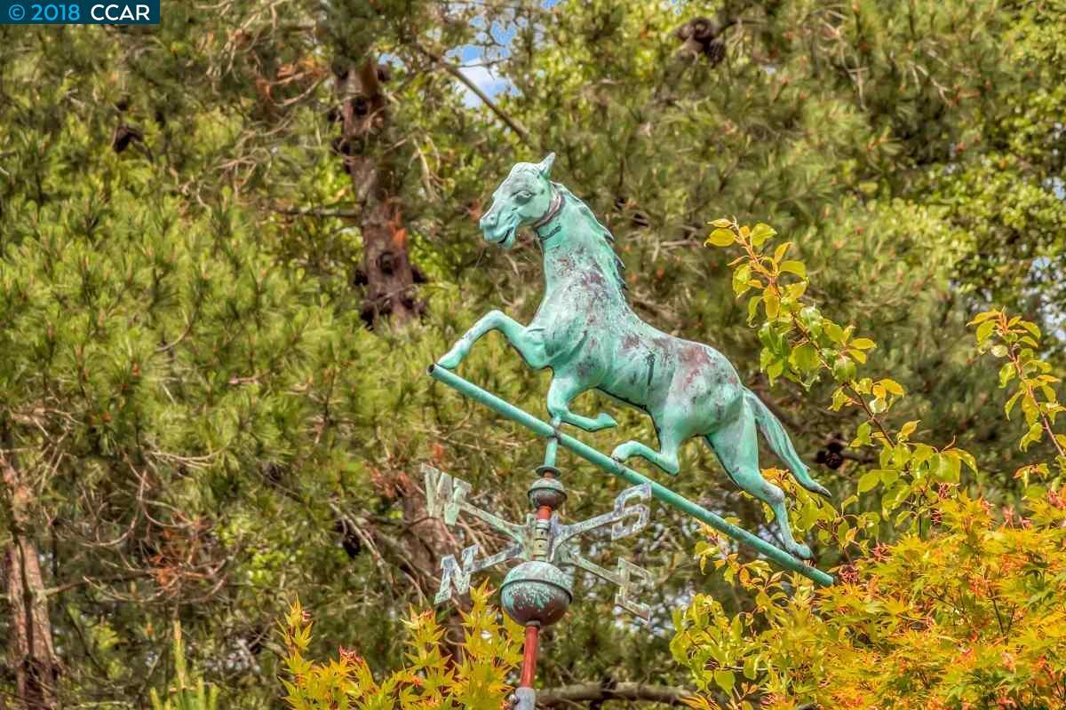 3 HONEY HILL COURT, ORINDA, CA 94563  Photo