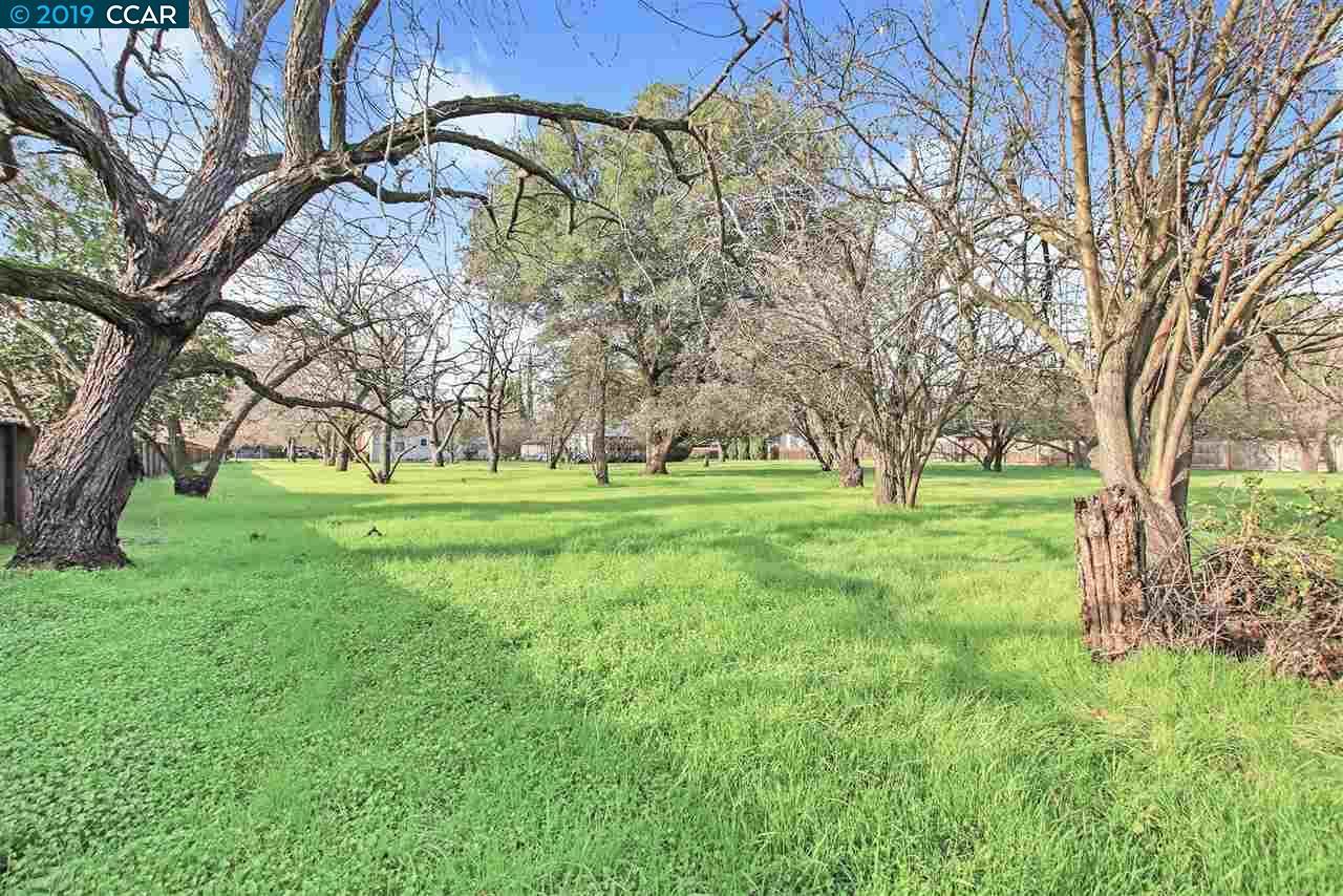 1836 CLAYTON WAY, CONCORD, CA 94519  Photo