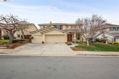 Image for 25589 Gold Ridge Dr, <br>Castro Valley 94552
