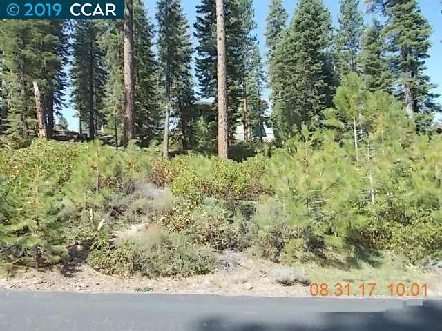 Truckee Mountain Properties - Truckee Properties, Tahoe City