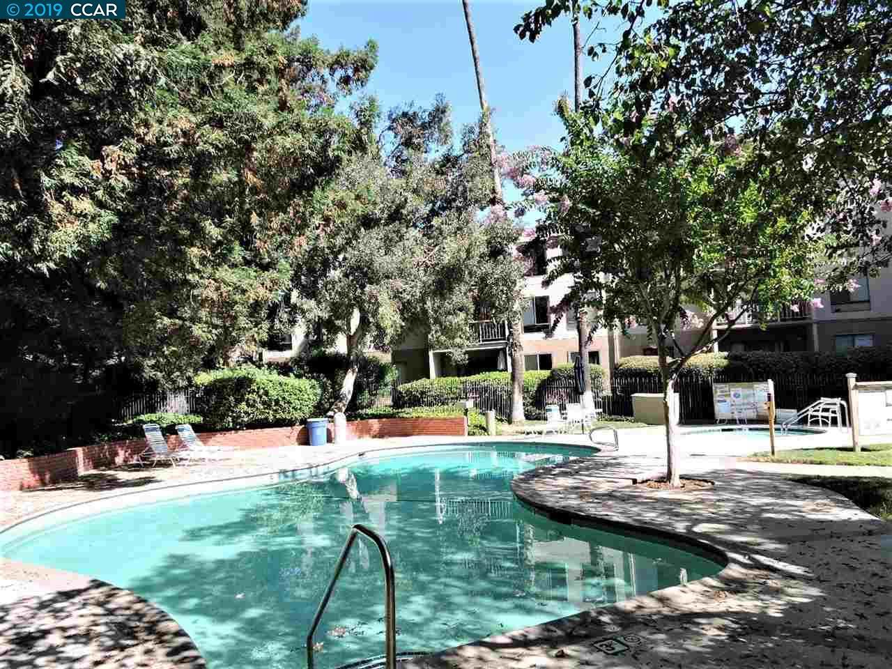 320 N #304 Civic Drive Walnut Creek, CA 94596