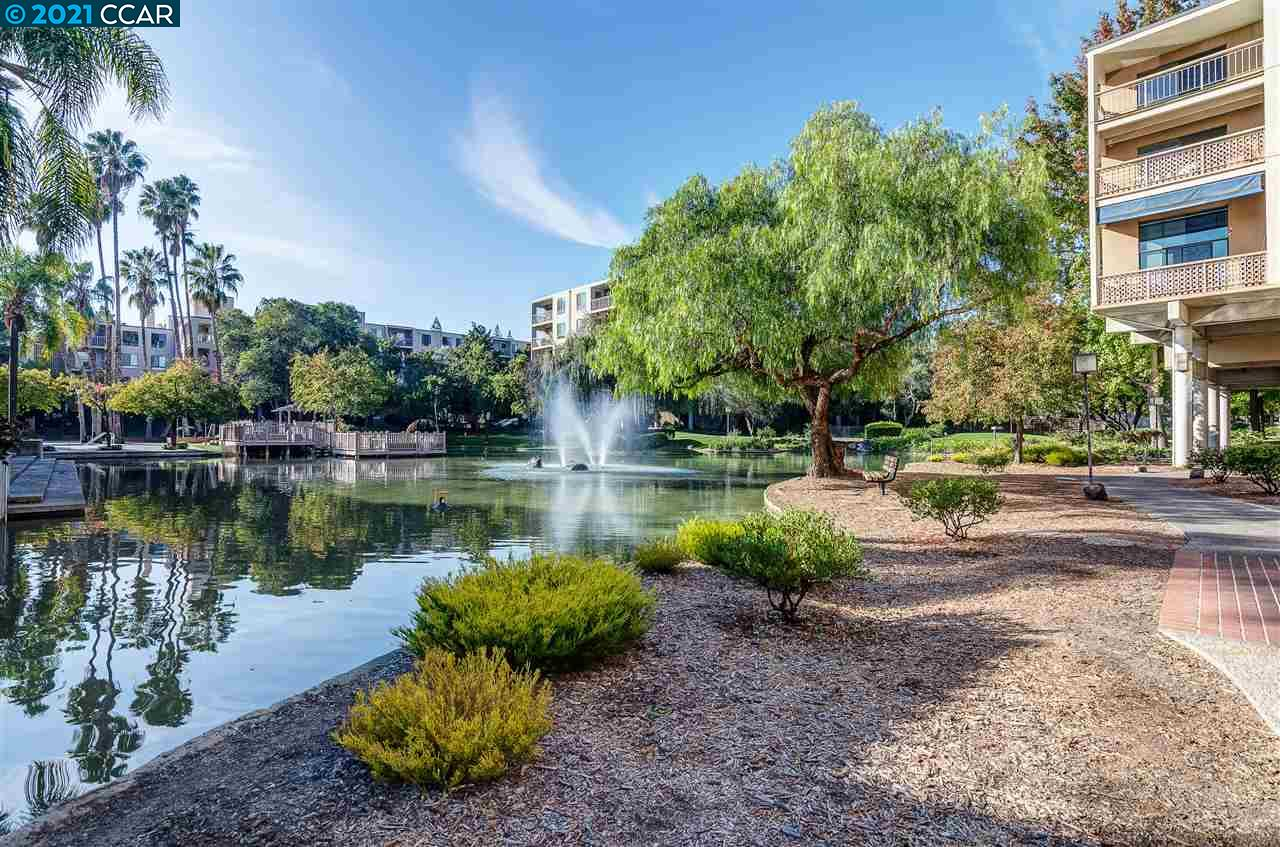 Detail Gallery Image 1 of 1 For 410 N Civic Dr. #211,  Walnut Creek,  CA 94596 - 1 Beds | 1 Baths